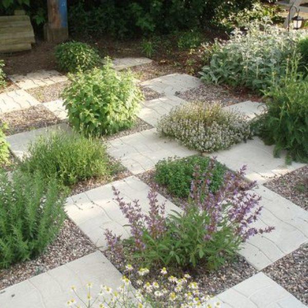 ziolowy ogrodek w ogrodzie